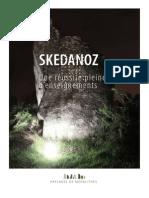 Bilan_SKEDANOZ.pdf