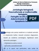 2.Semiologia Faringiană 13