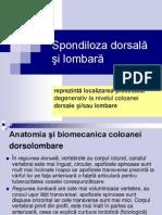 Spondiloza lombara.ppt