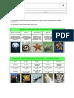 UNIDAD 2 cono resumen[1].pdf