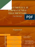 Tegumentul Si Formatiunile Tegumentare