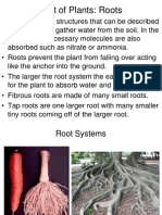 part of plants note taking slides