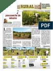 RURAL Revista de ACB Color - 19 Enero 2011 - PARAGUAY - PORTALGUARANI