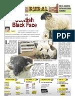 RURAL Revista de ACB Color - 15 diciembre 2010 - PARAGUAY - PORTALGUARANI
