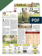 RURAL Revista de ACB Color - 1 diciembre 2010 - PARAGUAY - PORTALGUARANI