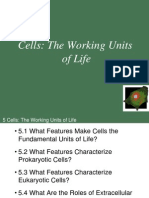 Ch05 Lecture Cells