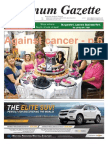 Platinum Gazette 31 October 2014