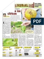 RURAL Revista de ACB Color - 29 setiembre 2010 - PARAGUAY - PORTALGUARANI