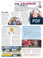 Hudson~Litchfield News 10-31-2014