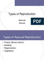 sexual vs  asexual reproduction pp