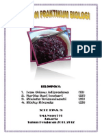 Laporan Praktek - Fermentasi Tape Ketan Hitam.docx