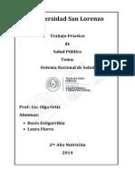 Sistema de Saud Paraguay
