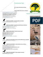 Africa Wild Illustrated Bird Brochure Kgalagadi