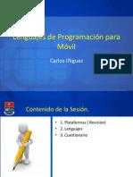 3.1 Lenguajes de Programacion