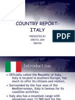 Country Reportitaly