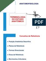 Terminologia do Estudo Anatómico