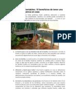 Huerta Orguerta orgánica
