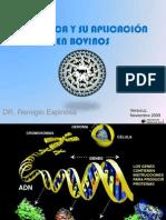 AIG_GENOMICA Y SU APLICACION EN BOVINOS.ppsx