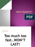 input quantity