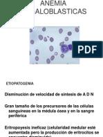 Anemia Megaloblastic
