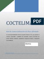 225937221 Proyecto Pisco Afrutdo