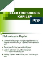 Elektroforesis-Kapiler.ppt