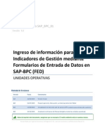 SAP-BPC Formulario Entrada Datos RA