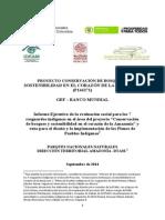 IV. Informe Ejecutivo Proyecto GEF 2.09.14
