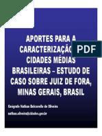 Aportes para a caracterização de cidades médias brasileiras - estudo de caso sobre Juiz de Fora, Minas Gerais, Brasil