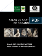 Atlas de Anatomia de Organos.pdf