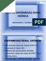 GuíaERC141112 (2).pdf