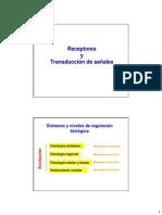 Diapositivas Clase