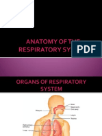 Finals Respiratory System