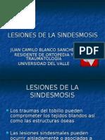 lesiones sindesmales2