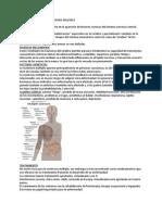 Esclerosis Multiple - Canchari Maria - Www.institutotaladriz.com.Ar