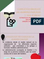 Concetos Basicos de Admin is Trac Ion y Sus Etapas