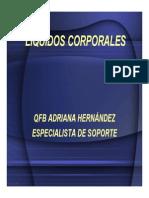 Microsoftpowerpoint Liquidosdi 110618131700 Phpapp01
