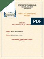 #4. LA DEMANDA TURÍSTICA (RESUMEN, MAPA CONCEPTUAL Y ENSAYO).