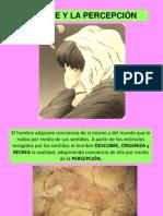 EL ARTE Y LA PERCEPCION.pdf