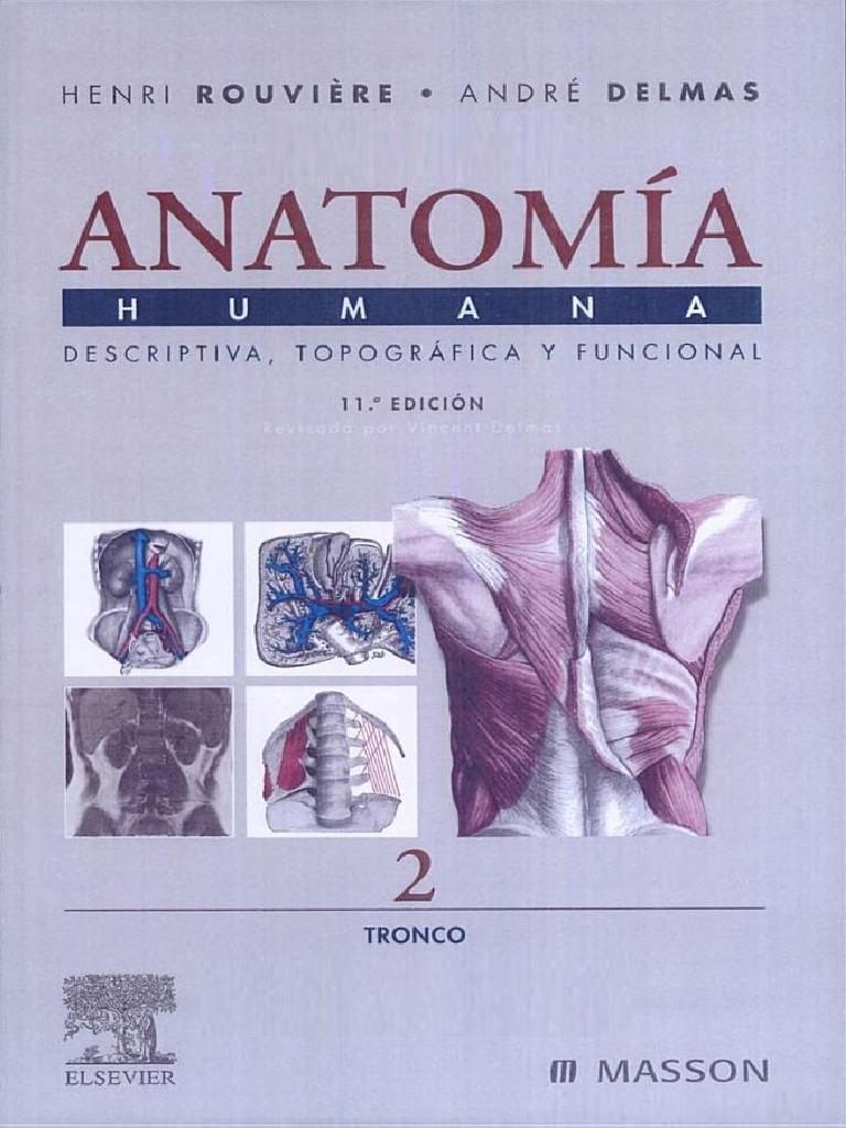 Anatomía Humana Descriptiva, Topográfica, Funcional - Henri Rouvière ...
