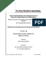 Analisis de La Ecoeficiencia en La Produccion Del Mezcal