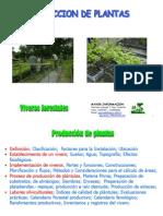 1.- Producción de Plantas