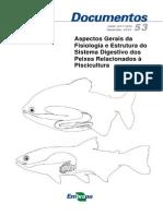 Sistema Digestivo de Peixes
