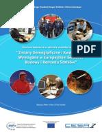 Studium badawcze w zakresie zasobów ludzkich (2008)