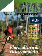 CAMPO - AÑO 11 - NUMERO 123 - SETIEMBRE 2011 - PARAGUAY - PORTALGUARANI