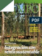 CAMPO - AÑO 11 - NUMERO 125 - NOVIEMBRE 2011 - PARAGUAY - PORTALGUARANI