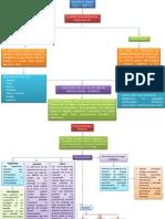 Mapa Conceptual Riesgo Fisicos Quimicos y Biologicos