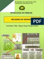 MOLIENDAII.pdf