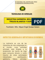 INDUSTRIA HARINERA.pdf