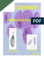 Trichomonas Spp 2014 [Modo de Compatibilidad]